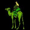 Założyciel Silk Road skazany na dożywocie bez zwolnienia warunkowego