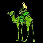 Agenci rozpracowujący Silk Road kradli BTC i sprzedawali informacje