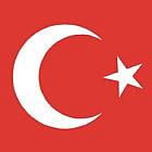 Polscy hakerzy co Turków dość nieudolnie udają