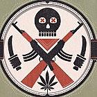 Jak meksykańskie kartele narkotykowe zbudowały swoje sieci łączności