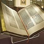 Książki, biblioteki i stare, dobre porno, czyli jak kraść, to z pasją