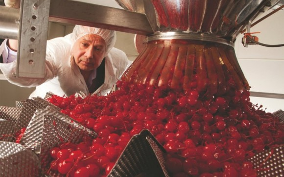 Przetwórnia wiśni