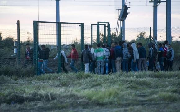 Imigranci pokonują furtkę