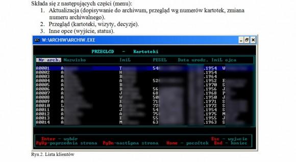 Zrzut ekranu fragmentu Polityki
