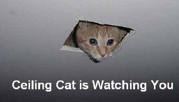 Ktoś zawsze patrzy